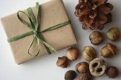 Nedgånglynne Ekollonar, trädmuttrar och frö med en sörjakotte och en i presentpapper ask i brunt papper och bast med kopieringsut Royaltyfria Foton
