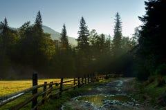 Nedgångmorgon i Carpathians 2 Royaltyfri Fotografi