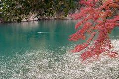 Nedgångsäsong Arashiyama Kyoto Japan Royaltyfria Bilder