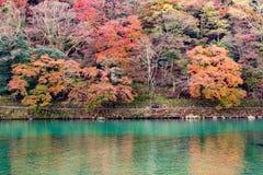 Nedgångsäsong Arashiyama Kyoto Japan Arkivfoton