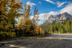 Nedgångsäsong i bergen av alberta Kanada arkivfoton