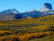 Nedgångsikt av det högsta berget Royaltyfria Bilder