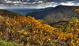 Nedgångträd i den blåa Ridge Mountains Royaltyfri Fotografi