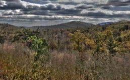 Nedgångträd i den blåa Ridge Mountains Arkivbilder
