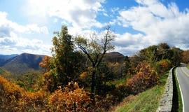 Nedgångträd i den blåa Ridge Mountains Arkivfoton