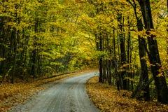 Nedgångvägen i skog av Pictured vaggar medborgaren Lakeshore Munisin Arkivfoton