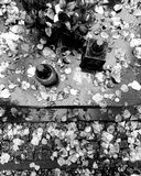 Nedgång på kyrkogård Konstnärlig blick i svartvitt Royaltyfri Fotografi