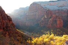 Nedgången färgar i dalen av den jungfruliga floden i Zion National Park Royaltyfri Fotografi