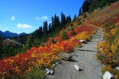 Nedgången visar dess riktiga färger på nationalparkvandring Arkivbilder