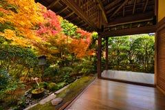 Nedgånglövverk i den Ryoan-ji templet i Kyoto Arkivfoto