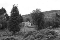 Nedskärning övergett Kerry lantbrukarhem Royaltyfria Bilder