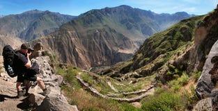 Nedstigningen till den Colca kanjonen med en man som tar ett foto i sydliga Peru Arkivfoto