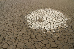 Need Water in Cracked Earth Royalty Free Stock Photos