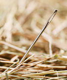 Needle Stock Photo