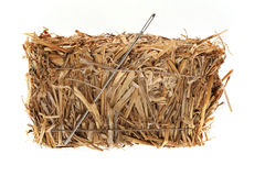 Needle in a hay bale Stock Photography