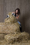 Needle in a hay stack Stock Image