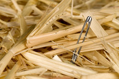 Needle in haystack Royalty Free Stock Photography