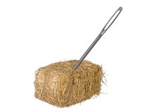 Needle in haystack. A needle is discovered in an obvious find.  Good for thinking the opposite from a needle in a haystack.  Easy to find.  No matter the Stock Image