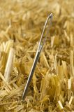 Needle In A Haystack. Needle sticking out of hay stock photos