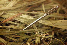 Needle in a haystack. Close up Stock Images