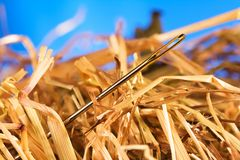 Needle in a haystack. Close-up of a needle in a hay Royalty Free Stock Image