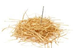 Needle in haystack. Closeup of a needle in haystack Royalty Free Stock Photos