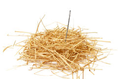 Needle in haystack Royalty Free Stock Photos