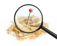 Needle in haystack Stock Images