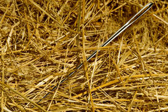 Needle in the haystack Stock Photos