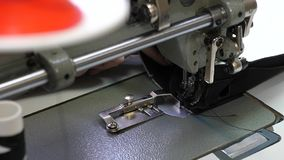 Needle of the sewing machine quickly moves up and down. process of sewing leather goods. Tailor sews black leather in. A sewing workshop. needle of the sewing stock image