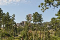 The Needles in Black Hills South Dakota and Mountain Views. The Needles in the Black Hills South Dakota was the original proposed site for Mt. Rushmore carvings Stock Images
