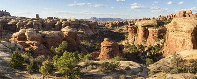 Needles Canyon Panorama Royalty Free Stock Photography