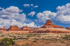 Needles District Canyonlads Stock Photography