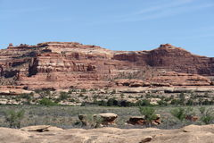 Needles District. Canyonlands National Park, Utah Stock Image