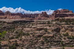 Needles District Utah Royalty Free Stock Image