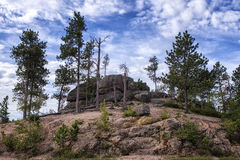 Needles Highway View. A view of the Needles rock formations in South Dakota Black Hills Stock Photography