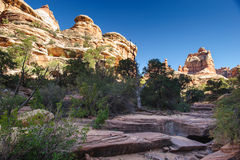 Free Needles In Canyonlands National Park Royalty Free Stock Photos - 24821058