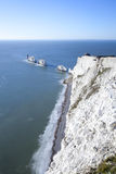 The needles Stock Photography