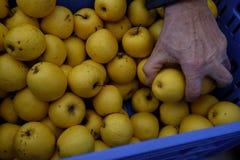 Neem appelen van de doos Royalty-vrije Stock Afbeeldingen