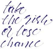 Neem het risico of verlies kans het handlettering, kalligrafie, typografie Vector Illustratie