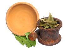 Neem leaf with soil bowl & iron mortar and pastle Stock Image