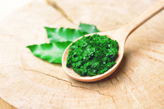 Neem leaves. Medicinal neem paste on wooden spoon with neem leaves on wooden background. herb in Thailand Royalty Free Stock Photography
