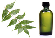 Neem oil Royalty Free Stock Image