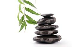 Neem spa. Ayurveda neem treatment  zen stones on white Royalty Free Stock Photography