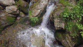 Neer zich beweegt met water aan steen, schot van hommel royalty-vrije stock afbeelding