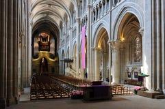 Nef de cathédrale de Lausanne du dos. images stock