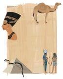 Nefertiti Papyrus Background Stock Photos