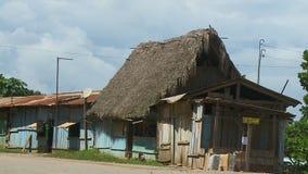 Negócio com Straw Hut Roof video estoque