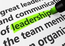 Negócio da liderança Fotos de Stock