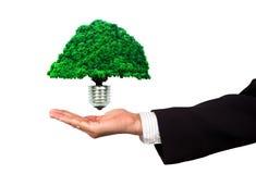 Negócio de Eco Imagem de Stock Royalty Free